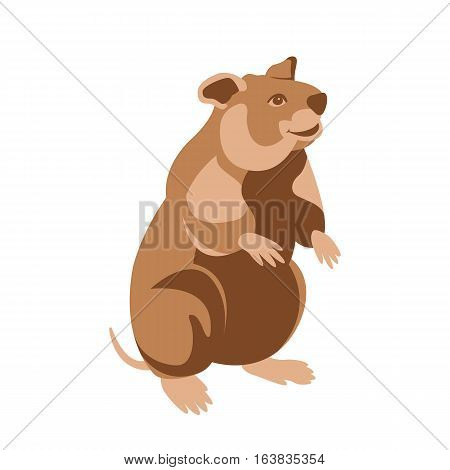 hamster  vector illustration Flat style profile side