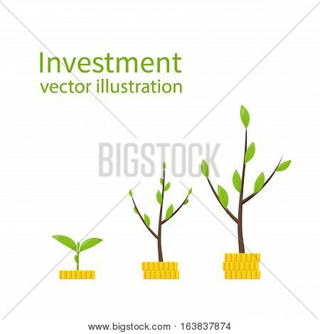 Investment concept. Infographics financial profit growth. Increase in profit. Growth process plant-money business metaphor. Vector flat design. Monetary contributions. Business development, revenue.
