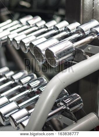 Picture shows a row of dumbbells neatly stacked on their stands.