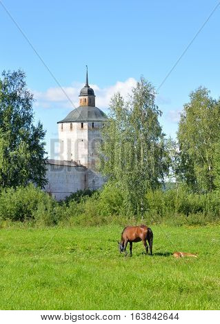 Fortress tower of Kirillo-Belozersky monastery and horse grazing in meadow by day near City Kirillov Vologda region Russia.