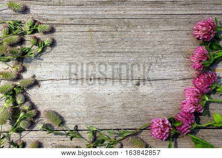 decoration with red clover flowers and leaves on the grey wooden background