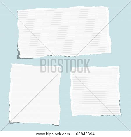 White ruled torn note, notebook, copybook paper sheets stuck on blue background.
