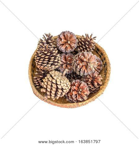 pine cones in basket isolated on white background