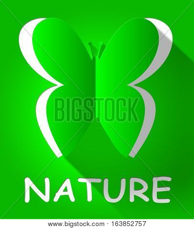 Nature Butterfly Shows Scenic Outdoors 3D Illustration