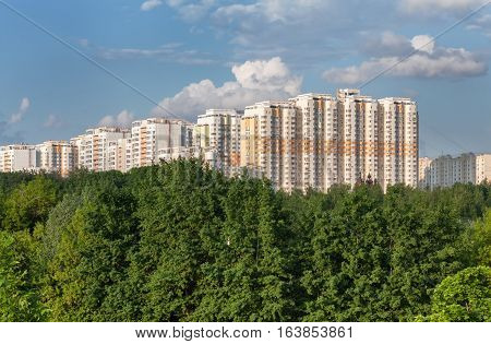 Modern multistore apartment buildings for the forest canopy