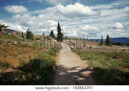 A portion of the pacific crest trail