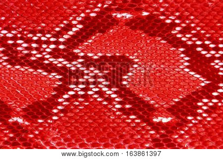 close up red texture leather Snake skin