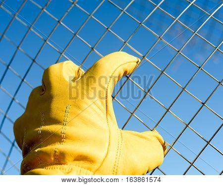 Male Yellow Gloved Hand Handling Chicken Wire
