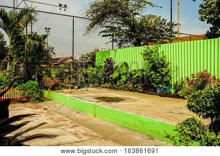 Backyard with beautiful garden and a green wall photo taken in Semarang Indonesia java