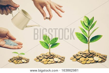 Business Cooperation - Hands helping planting trees growing on coins together with green background - Building business with csr and ethics
