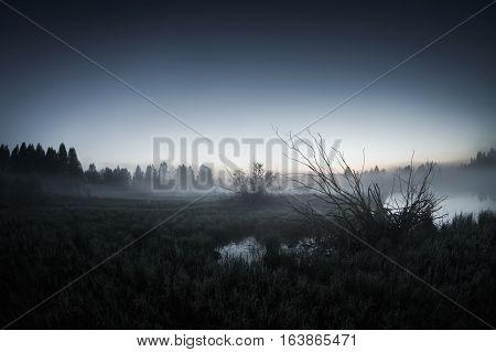 mist over the lake dusk over the lake a very dense fog dawn