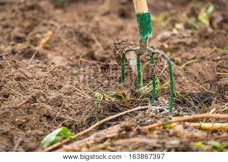 Fork in garden. Fork nailed in garden soil close up of gardener tool
