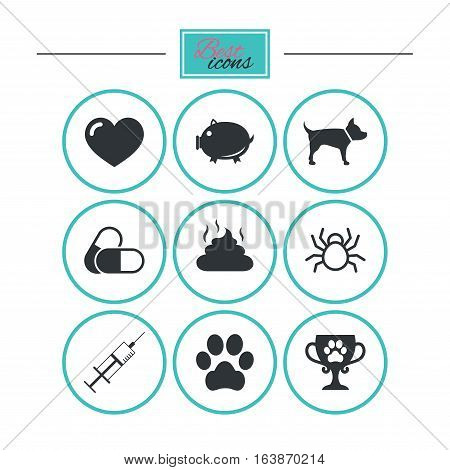 Veterinary, pets icons. Dog paw, syringe and winner cup signs. Pills, heart and feces symbols. Round flat buttons with icons. Vector