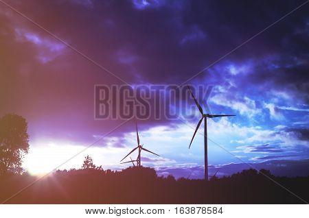 Windturbine Farm At The Sunset