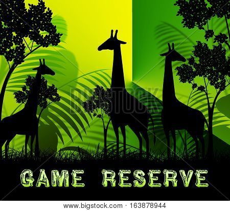 Game Reserve Means Wildlife Plains 3D Illustration