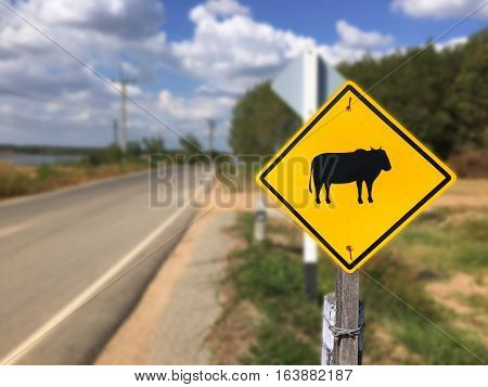 Beware animal sign on the road in thailand