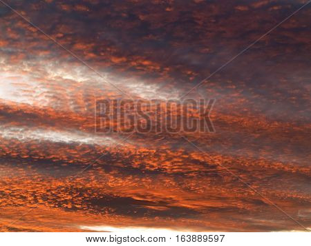 Red sky at dusk - image of the rosy sky - gloaming - sunset colors