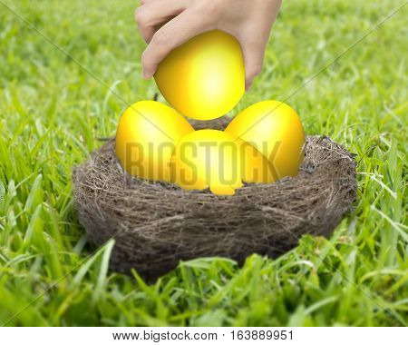 Woman Hand Holding One Of Golden Eggs In Nest