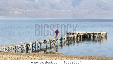 picture of man and dog on a pier on lake prespa in macedonia poster