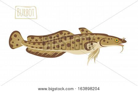 Brown spotted Burbot, vector illustration cartoon style