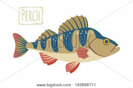 Perch, blue and beige, vector cartoon illustration