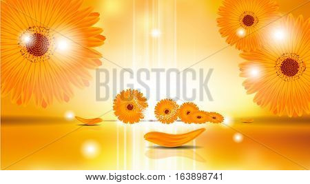 Digital Vector Sunflowers Background with sparkles and light waves. Ready for product placement and infographic, poster, ads, print or magazine