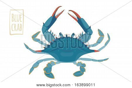 Blue crab, funny vector illustration cartoon style