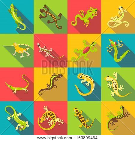 Different lizard icons set. Flat illustration of 16 different lizard vector icons for web