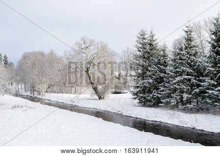 Small River With White Snow
