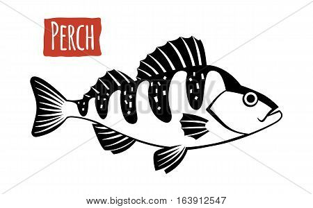 Perch, black and white vector illustration, cartoon style