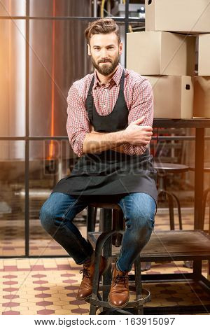 Full body portrait of a handsome brewer in apron and checkered shirt at the manufacturing