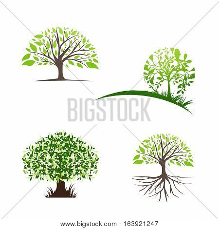 Different Gardening and Landscaping Tree Logo Collection Over White