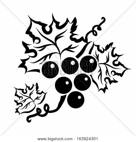 Grape Branch With Leaf In Black Over White Background