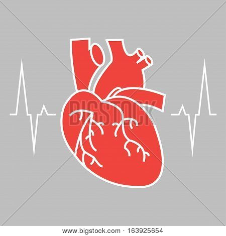 The heart and cardiogram icon. Heart and cardiogram symbol. Vector illustration