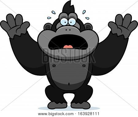 Cartoon Gorilla Panicking