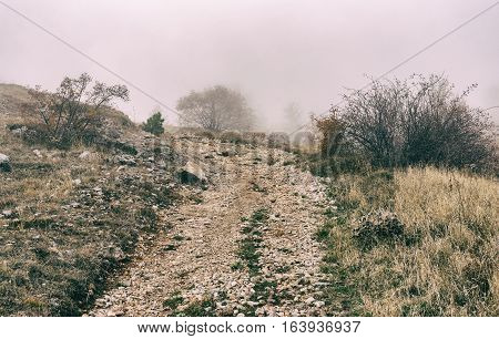 Rocky road leading to scary and misty upland