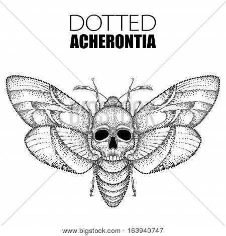Vector drawing of dotted black Death's head hawk moth or Acherontia atropos isolated on white background. Illustration of butterfly with skull in dotwork style for tattoo design.
