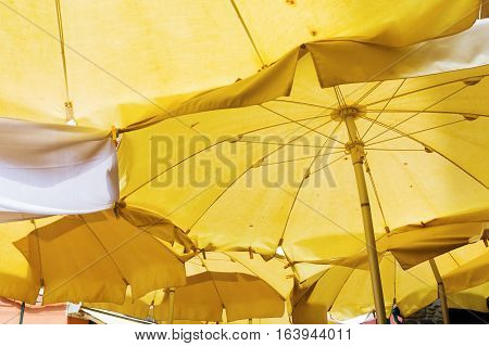 low angle view of sunshades at a seaside resort