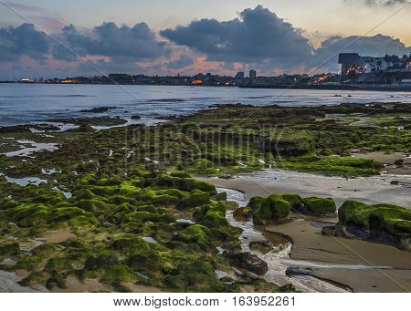 Portugal Cascais. Atlantic coastal strip embankment ebb. Stones covered with moss early evening. In the background lights of the city .