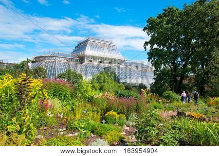 SAINT-PETERSBURG, RUSSIA, AUGUST 3, 2016: People walk in Peter the Great Botanical Garden (Botanic Gardens of the Komarov Botanical Institute of of the Russian Academy of Sciences)