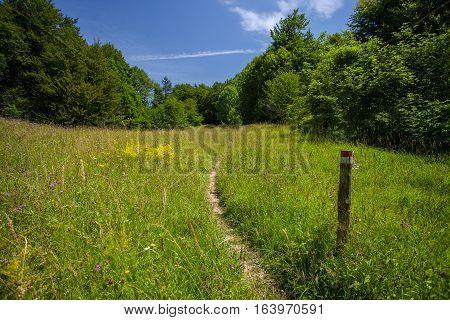 Tourist Trail in Plitvice Lake National Park Croatia