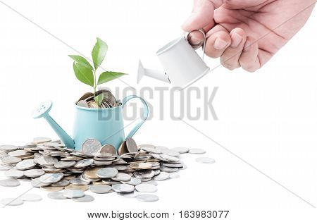 Businessman watering a tree growing out of silver coins on watering pod isolated on white background, saving, investment and Interest Concept