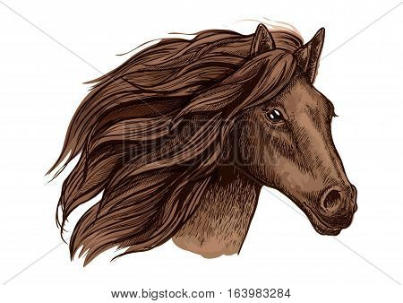 Horse head vector isolated icon. Symbol for equine horse racing sport. Brown mare or stallion with wavy mane. Wild horse run in wild freedom poster
