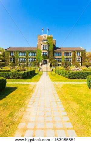 Yonsei University Footpath Main Building Grass V