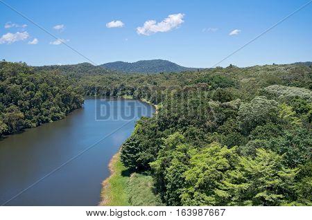 barron river flowing through rainforest of barron gorge national park near cairns of queensland australia