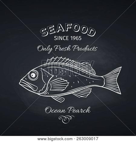 Hand Drawn Ocean Perch Fish On Chalkboard. Seafood Icon Menu Restaurant Design. Engraving Style. Vec