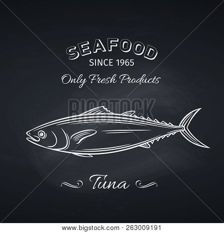 Hand Drawn Tuna Fish On Chalkboard. Seafood Icon Menu Restaurant Design. Engraving Style. Vector Ill