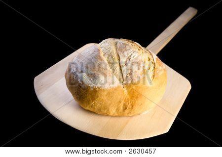 Loaf Of Crusty Italian Bread On Peel