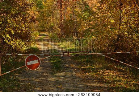 Authentic Autumn Photo Trail In The Autumn Forest.  Barrier On The Trail. Autumn, Autumn Colors