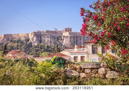 Ancient Greek Ruins With Flowers Overlooking The Acropolis, Athens, Greece. Famous Acropolis Is The
